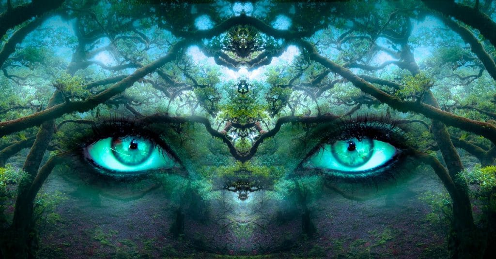 Forest with female eyes bending reality