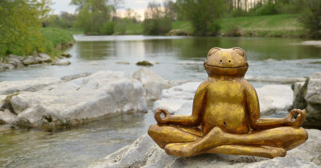 small statue of frog meditating on a rock in front of a river